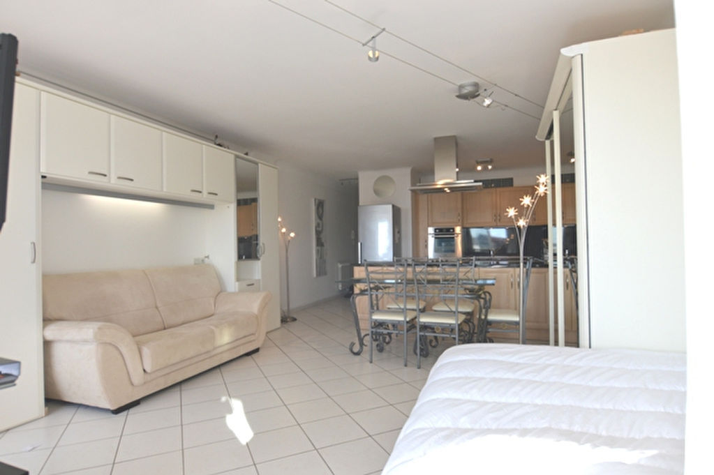appartement-languedoc-roussillon-midi-pyrenees-1-piece-s